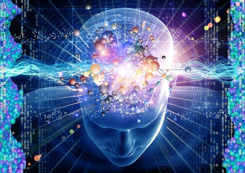 大腦越用才會越靈活